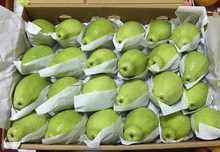 Fresh guava specification