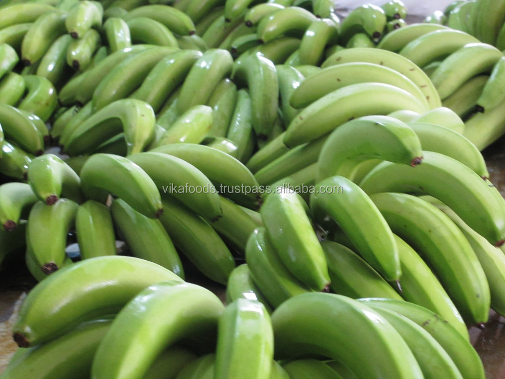 Fresh Banana - Frozen Banana- High Quality and Best Price - New crop