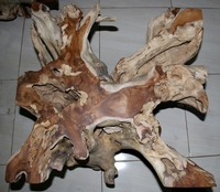 Natural Teak Root Coffee Table