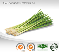 Thai Lemongrass Essential Oil : ISO, GMP Certified : High Quality Best Price