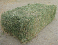 Top Quality Alfafa Hay For Animal feeding stuff Alfalfa / alfalfa hay / alfalfa hay for sale
