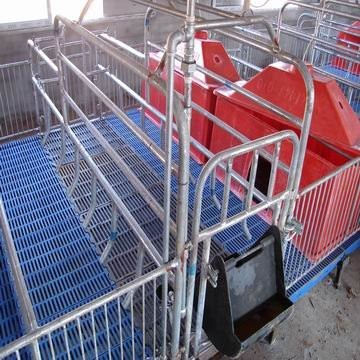 Pig farming equipment pig farrowing crate for sale