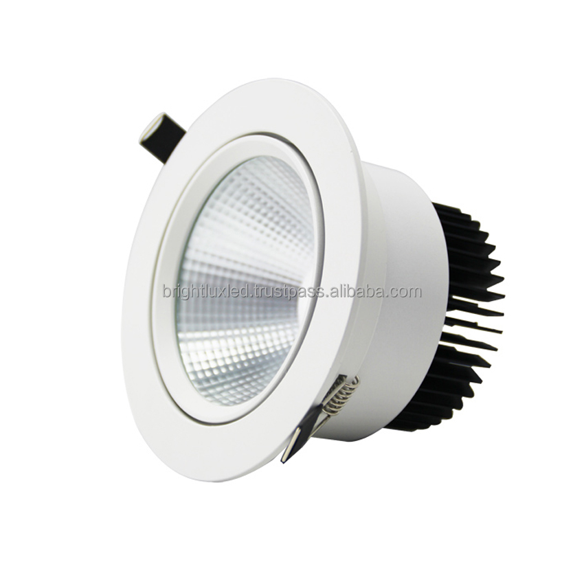 15 Watts led downlight, Adjustable, EPISTAR or CREE Chip