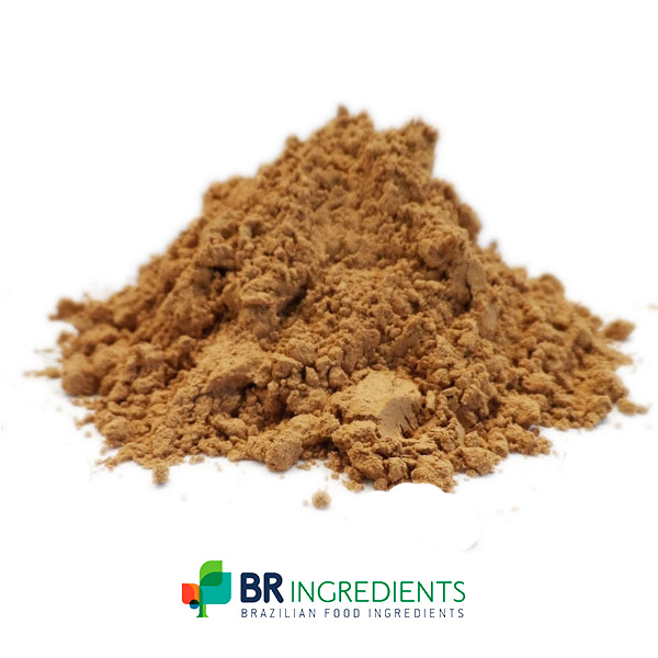 Brazilian Guarana Seeds Extract Powder