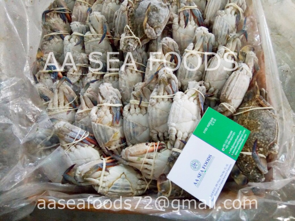Ocean Food Frozen Blue swimming crabs / 3 spot crab/Processed