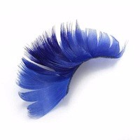 novelty party false eyelashes colorful