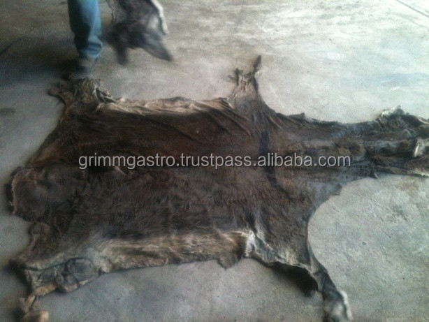 Wet Salted Donkey hides, Wet salted Donkey skin, Dry salted donkey hides
