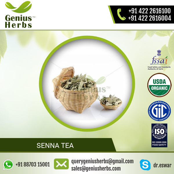 Senna Leaf Tea for Weight Loss Available from Trusted Supplying Company