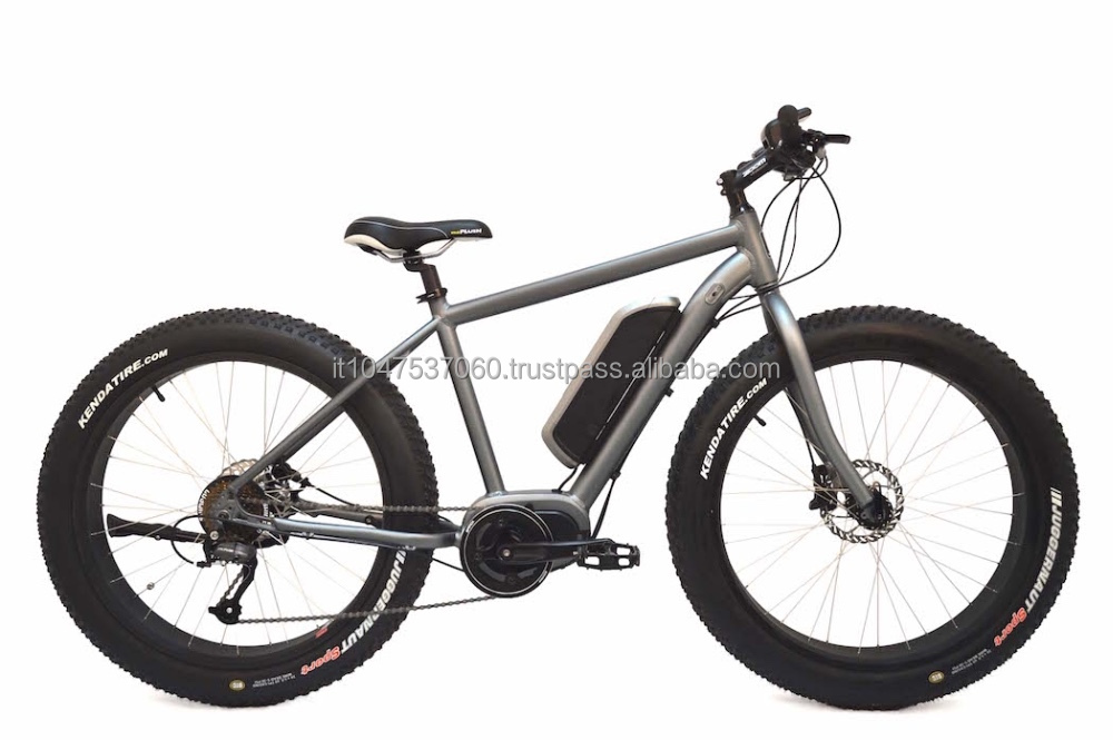Cruiser Central Motor 8FUN Electric Bike (MS-TDE04Z)