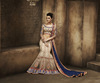Indian Latest Bridal Sarees Online Shopping