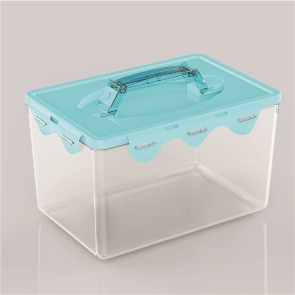 Food storage container printing your company logo offset printing avaliable as your requested Sina Food Container-L670 blue
