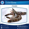 Top Grade Quality Frozen Prawns with Vacuum Packaging