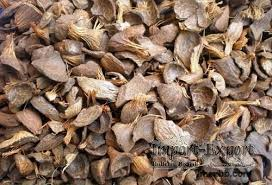 high quality and reasonable price natural palm oil kernel shell