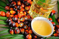 Crude Palm Oil AA