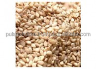 GOOD IN TATSE ROASTED NATURAL SESAME SEED NEW CROP 2016