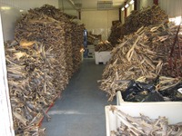Dried Stock Fish & dried Cod Fish heads