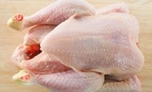 High Quality Halal Whole frozen chicken for sale