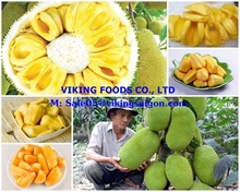 COMPETITIVE PRICE_FROZEN JACKFRUIT_FROM VIETNAM !