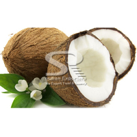 Exporters Of Semi Husked Coconuts From India to south africa