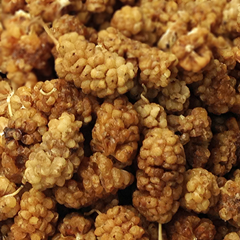 Freeze dried mulberry- Best Prices