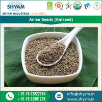 Hot Selling Branded Anise Seed by Global Supplier at Market Price