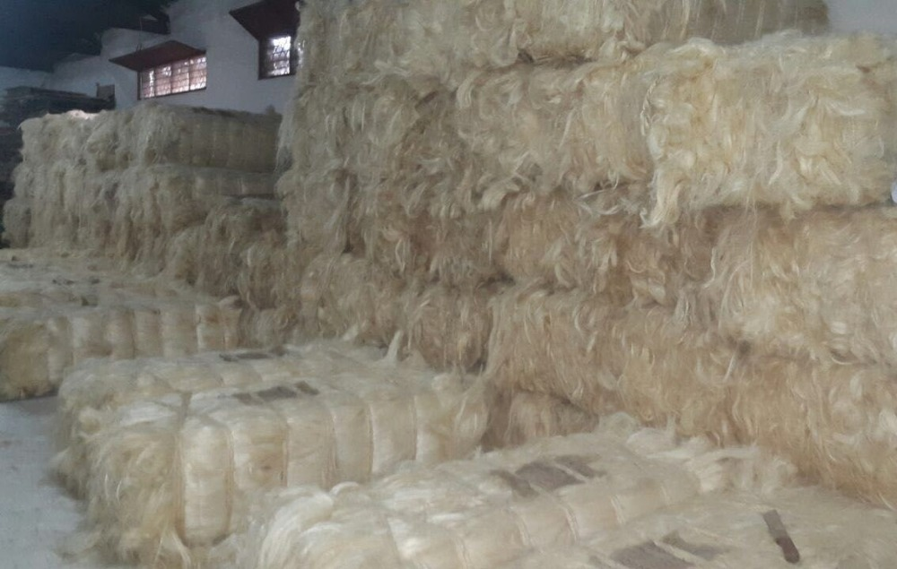 Natural Sisal Fiber for sale in Tanzania