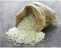 Vietnam Rice 6976 5 % Broken Best selling