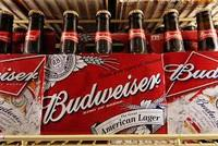 Budweiser Beer for sale