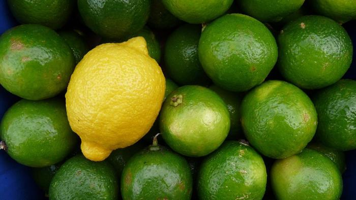 Premium Quality-Fresh Lemon South Africa