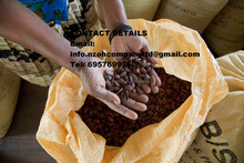 Well Dried Cocoa/Cacao Beans For Sale