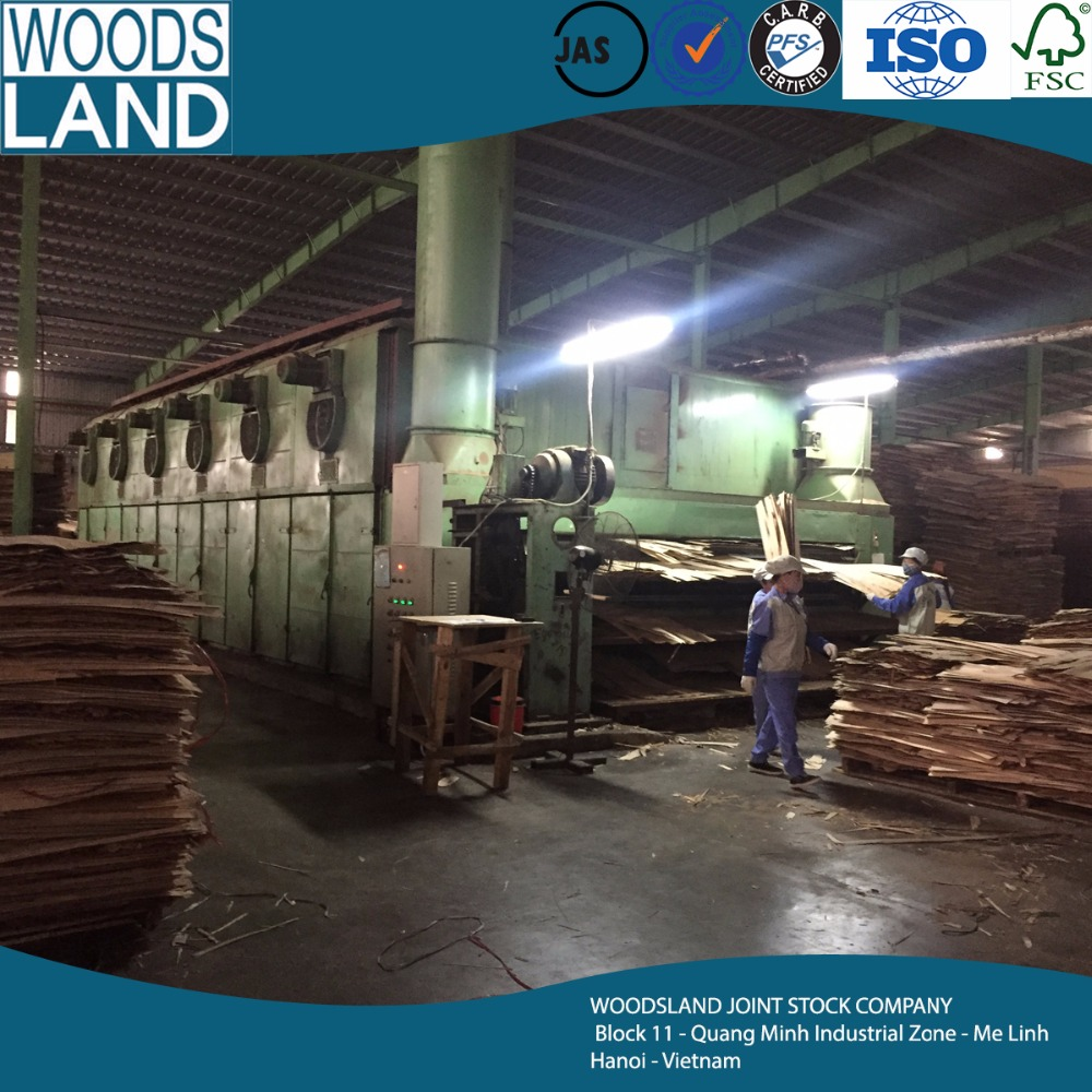 Supply 1220*2440mm PACKING PLYWOOD From Vietnam Supplier