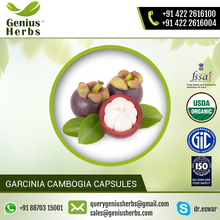 Ensure Quality Herbal Garcinia Cambogia Capsules Available for Sale at Wholesale Price