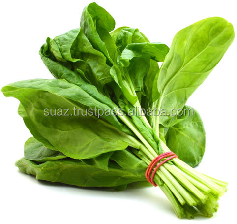 Fresh Spinach , Pakistan vegetable exporter