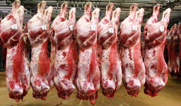 FROZEN LAMB CARCASS