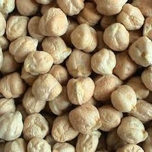 High Quality and Best Selling Chickpeas