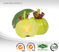 Garcinia Powder Extract : 60% (-)-Hydroxycitric Acid : Weight loss, Antibacterial, Relieving inflammation