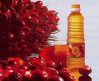 CPO crude palm oil