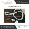 High End Quality Pure White Thin Leather Dog Collar from Well Known Market Supplier