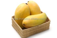 Fresh Green Mangoes , Sweet Mangoes , Mango Price