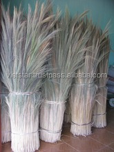 Household 2016_Grass Broom Raw Materials/Coconut Leaf Sticks Broom Raw Materials/broom