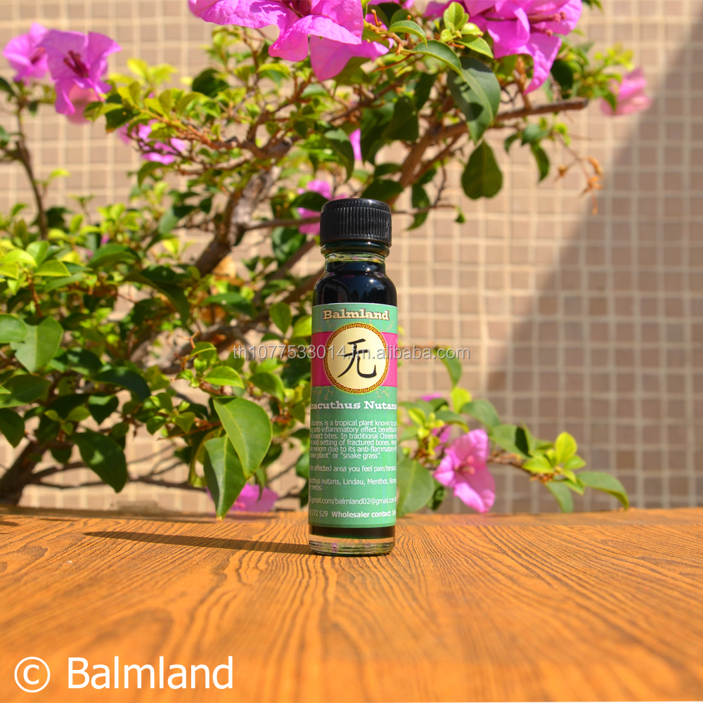 BALMLAND New Muscular Joint Pain Relief Massage Herb Clinacanthus Nutans Oil/Relaxation/headache/Blood Health/Flu/25ml
