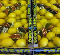 Fresh Citrus Fruits /Yellow Lemon