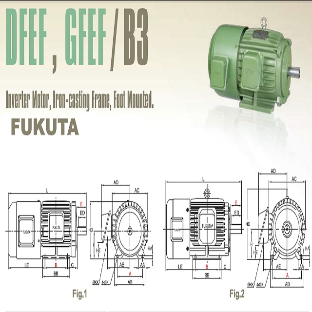 GO FUKUTA high performance , standard induction power motor G,D Series iron-casting frame foot mounted (1)