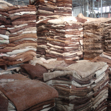 Wet Salted Sheep Hides For Sale, Wet Salted Sheep Skin For Sale, DRY SALTED SHEEP SKIN FOR SALE