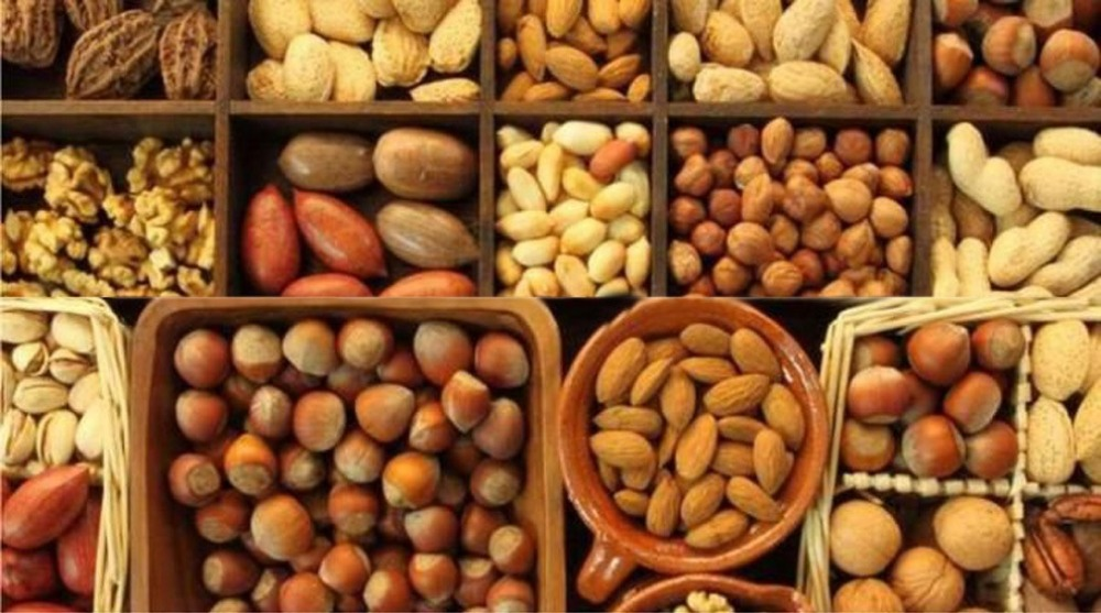 High quality nuts and kennels, chestnuts, coconuts, hazelnuts, peanuts, pecan, pine, pistachio, walnuts,raisins