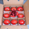 "Best Price ""Pomegranate"" Fruits"