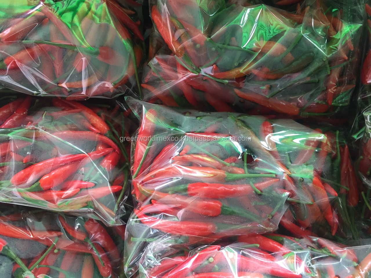 CONTINUED HOT WITH FRESH/ FROZEN/DRIED CHILI FROM VIET NAM-HIGH QUALITY- COMPETITIVE PRICE
