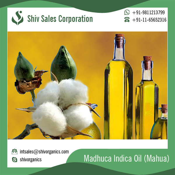 Pure Essential OIl Madhuca Indica Oil / Mahua Oil