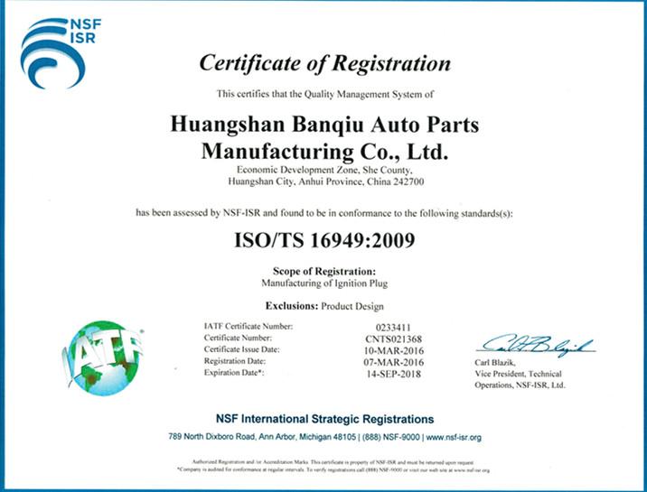 Auto parts Spark Plug PLZF7RD-11 for BMW