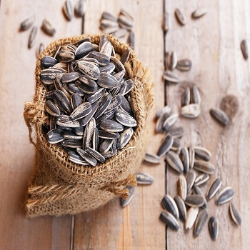 Hot Sale High Quality organic sunflower seeds in shell